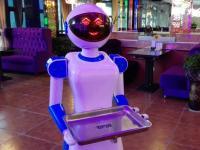 餐饮机器人,智慧开启未来