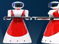 仿真美女机器人的用途